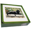 Faithful Friend Pack of 6 Cat Coasters (CC064) RRP £9.95 CLEARANCE XL £2