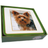 Faithful Friend Pack of 6 Dog Coasters (CC062) RRP £9.95 CLEARANCE XL £2