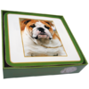 Faithful Friend Pack of 6 Dog Coasters (CC024) RRP £9.95 CLEARANCE XL £2