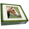 Faithful Friend Pack of 6 Horse Coasters (CC116) RRP £9.95 CLEARANCE XL £2