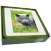 Faithful Friend Pack of 6 Cat Coasters (CC104) RRP £9.95 CLEARANCE XL £2