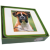 Faithful Friend Pack of 6 Dog Coasters (CC013) RRP £9.95 CLEARANCE XL £2