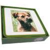 Faithful Friend Pack of 6 Dog Coasters (CC009) RRP £9.95 CLEARANCE XL £2