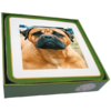 Faithful Friend Pack of 6 Dog Coasters (CC014) RRP £9.95 CLEARANCE XL £2