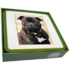 Faithful Friend Pack of 6 Dog Coasters (CC053) RRP £9.95 CLEARANCE XL £2