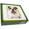 Faithful Friend Pack of 6 Dog Coasters (CC087) RRP £9.95 CLEARANCE XL £2