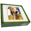 Faithful Friend Pack of 6 Dog Coasters (CC088) RRP £9.95 CLEARANCE XL £2