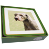Faithful Friend Pack of 6 Dog Coasters (CC093) RRP £9.95 CLEARANCE XL £2