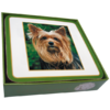 Faithful Friend Pack of 6 Dog Coasters (CC060) RRP £9.95 CLEARANCE XL £2