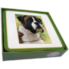 Faithful Friend Pack of 6 Dog Coasters (CC011) RRP £9.95 CLEARANCE XL £2