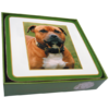 Faithful Friend Pack of 6 Dog Coasters (CC054) RRP £9.95 CLEARANCE XL £2